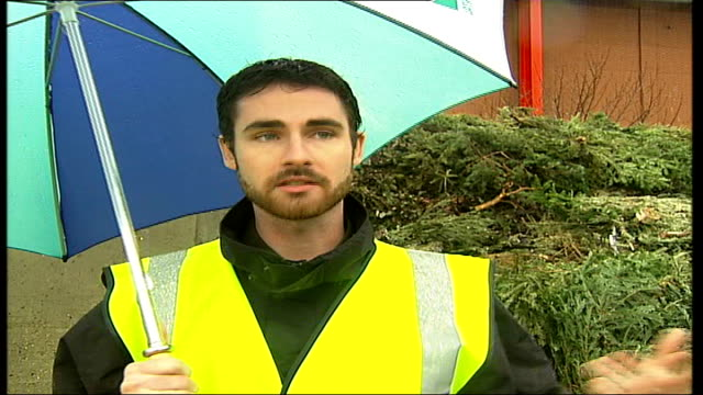 vídeos y material grabado en eventos de stock de westminister council's tree recycling scheme walford interview sot on how all decorations should be taken off christmas trees before they are placed... - walford