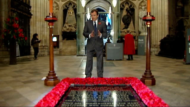reporter to camera beside tomb of unknown warrior - tomb of the unknown warrior westminster abbey stock videos & royalty-free footage