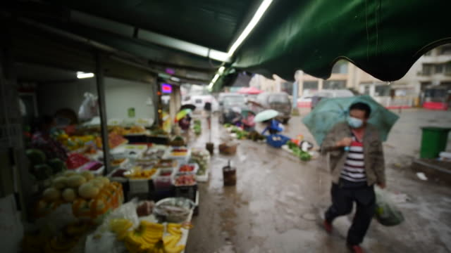 wet market in wuhan, similar to the one that could possibly be the source of passing the coronavirus to humans - market stock videos & royalty-free footage