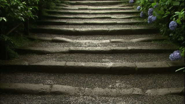 wet stone stairs going up to the temple gate. - 神奈川県点の映像素材/bロール