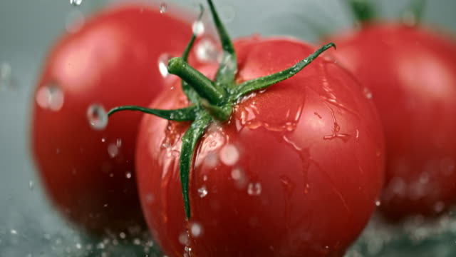 vídeos de stock e filmes b-roll de slo mo cu wet tomatoes falling on a table - três objetos
