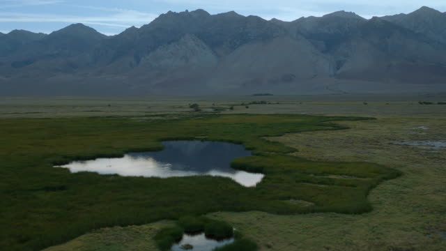 wetlands in the owen valley with the eastern sierra nevada mountains. - basin and range province stock videos and b-roll footage