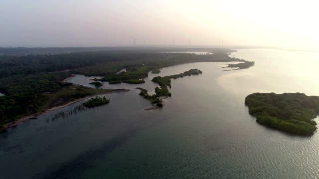 vídeos de stock, filmes e b-roll de zonas húmidas do oeste de sri lanka - pântano salgado