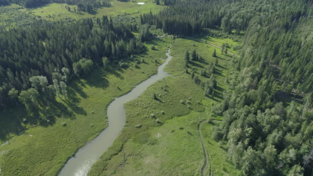 wetlands seen from above - idaho stock videos & royalty-free footage