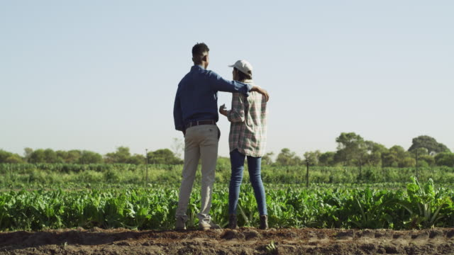 we've really done a great job on this farm babe - colleague hug stock videos & royalty-free footage