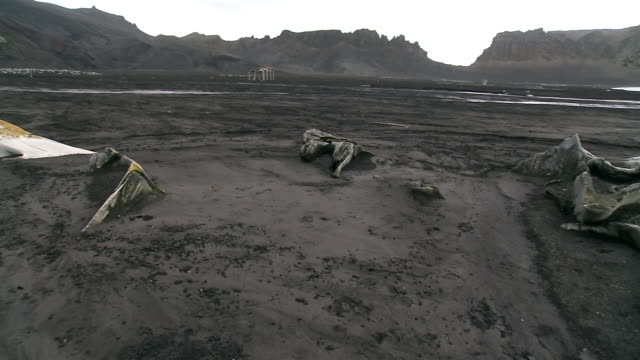 WS, PAN, Whale bones in abandoned whaling station, Whalers Bay, Deception Island, Antarctica