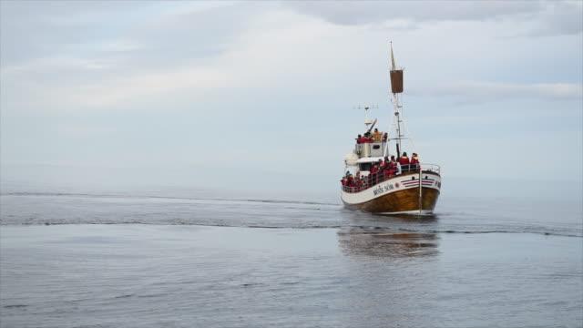 vídeos y material grabado en eventos de stock de whale watching boat in iceland, europe. - slow motion - cetáceo