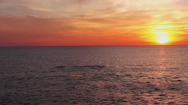 stockvideo's en b-roll-footage met whales breaching baja mexico - uit het water springen