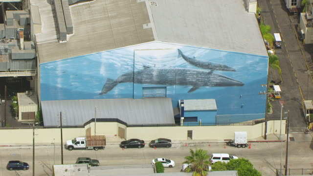 ws aerial pov whales mural on wall of paramount studio stage 29 building / los angeles, california, united states - paramount studios stock videos & royalty-free footage