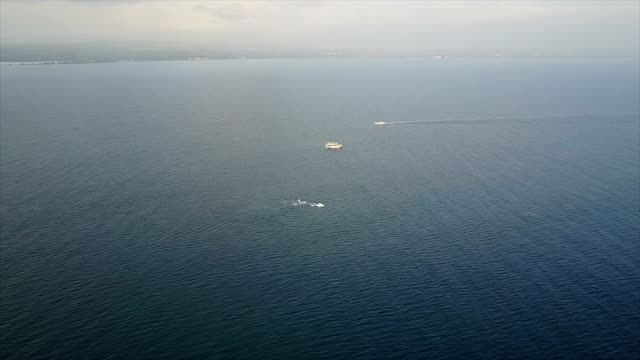 Whales Splashing in Distance off Coast of Maui Island