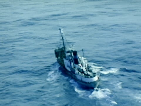 whaling fleet catcher ship td ws boat coming closer to swimming whale td ws bow of boat w/ harpoon moving on ocean - harpoon stock videos and b-roll footage