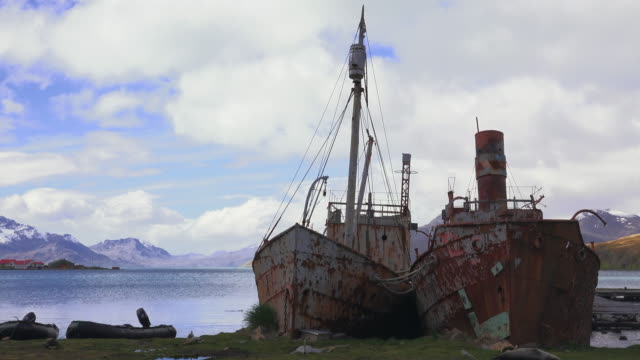 whaling ships, grytviken, south georgia, southern ocean - sydgeorgien bildbanksvideor och videomaterial från bakom kulisserna