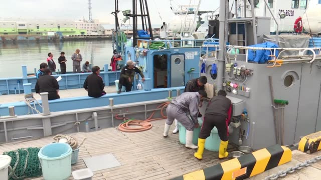whaling ships set sail from japan as the country begins its first commercial hunts in decades after withdrawing from the international whaling... - valfångst bildbanksvideor och videomaterial från bakom kulisserna