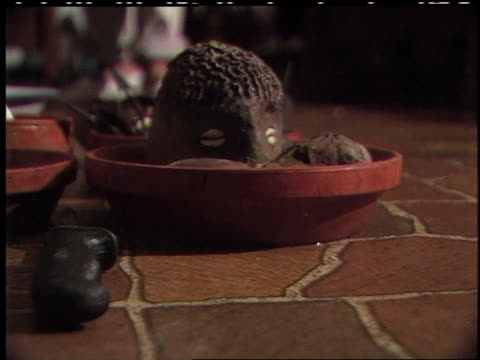 of what looks like wooden heads and conch shells inside bowls on the floor. - animal shell stock videos & royalty-free footage