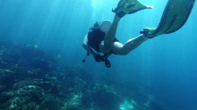 stockvideo's en b-roll-footage met welke bezienswaardigheden zal de zee ons vandaag laten zien? - zwemvlies