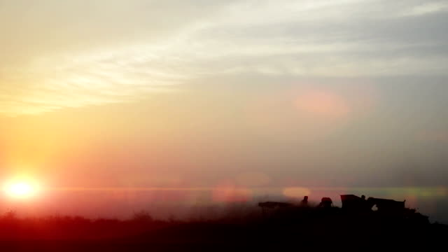 wheat crop harvesting during sunset - fieno video stock e b–roll