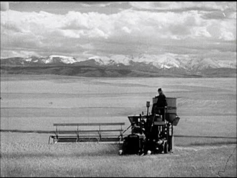 wheat field w/ farmer, farm hand driving thrasher w/ mountains distant bg. two men working on covered harvester - prärie stock-videos und b-roll-filmmaterial
