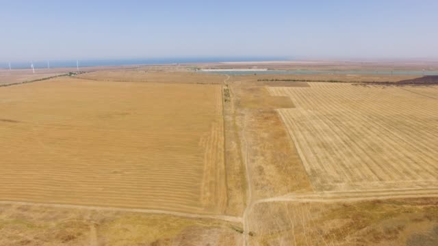 AERIAL: Wheat fields after harvesting