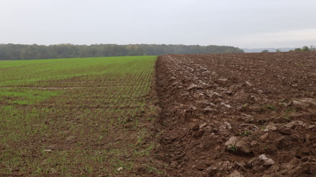 wheat fields and countryside landscape - plowed field stock videos and b-roll footage