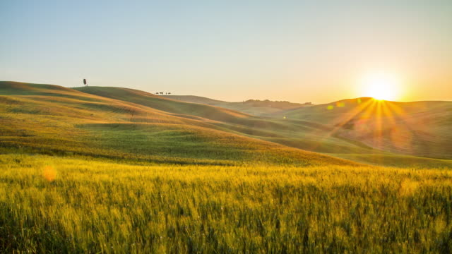 t/l wheat fields in the tuscany countryside - dramatic sky stock videos & royalty-free footage