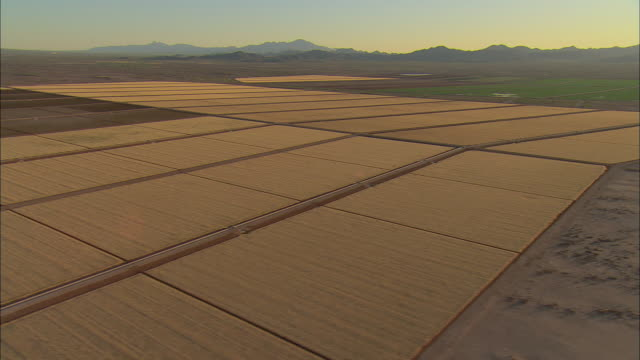 aerial wheat fields near bowie with dos cabezas mountains in background, bowie, arizona, usa - arizona stock videos & royalty-free footage