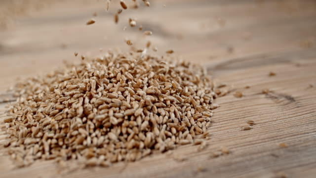 SLO MO Wheat grains falling on a table