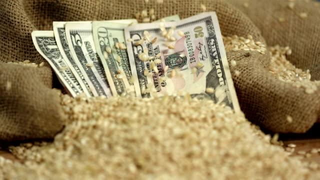 hd: wheat grains falling on dollar bills - wheat stock videos and b-roll footage