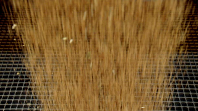 stockvideo's en b-roll-footage met wheat grains falling through a metal grill - cereal plant
