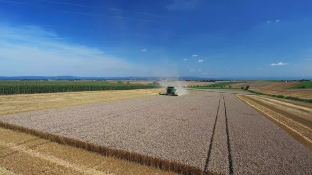 Wheat Harvest In Gäuboden (Gaeuboden) Area In Lower Bavaria