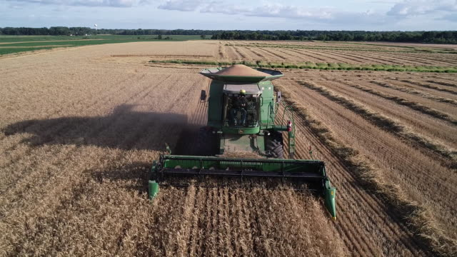 wheat is harvested with a john deere co combine harvester in kirkland illinois us on tuesday july 16 2019 - sunset stock videos & royalty-free footage