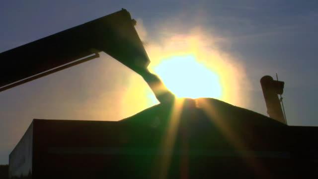 Wheat Loading Silhouette