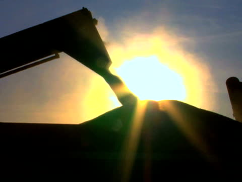 wheat loading silhouette - flour stock videos & royalty-free footage