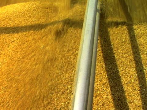 Di grano Pile