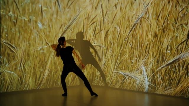 vídeos y material grabado en eventos de stock de proyección de trigo sobre una bailarina - realidad aumentada espacial
