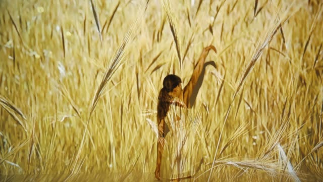 wheat projection upon a female dancer - projection stock videos & royalty-free footage