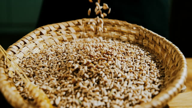 slo mo wheat seeds falling into a wicker bowl - cereal plant stock videos & royalty-free footage