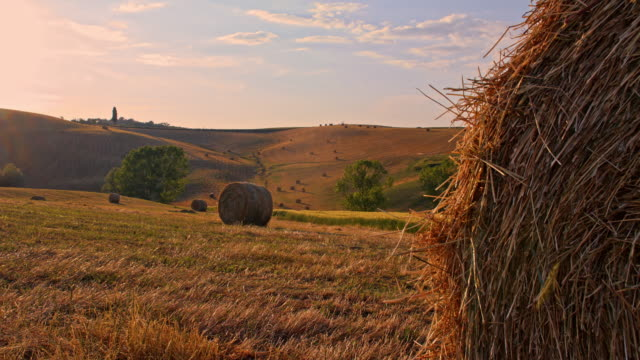 ds wheat straw bales in tuscany countryside - straw stock videos & royalty-free footage
