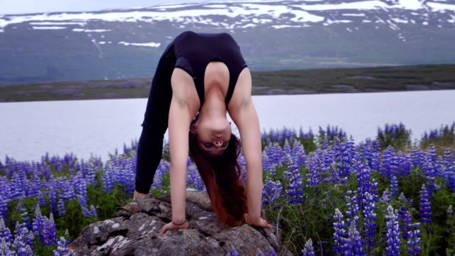 Wheel pose on a meadow full of lupines