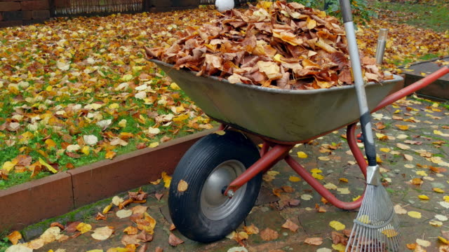 wheelbarrow and rake - chores stock videos & royalty-free footage