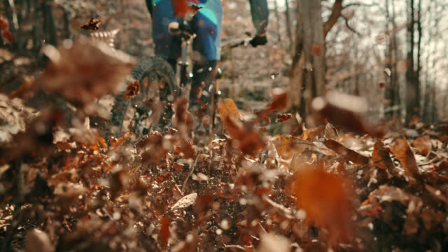 slo mo wheels of the mountain bike moving through leaves in the forest - mountain bike stock videos & royalty-free footage
