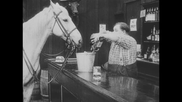 1918 when a man brings his horse to the saloon for water, bartender (fatty arbuckle) serves it alcohol and gets it drunk - wild west stock videos & royalty-free footage