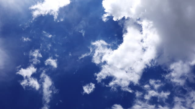 vidéos et rushes de quand je regarde vers le ciel bleu - bleu