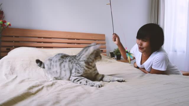 vidéos et rushes de lorsque vous travaillez de la maison avec des chats - hot desking