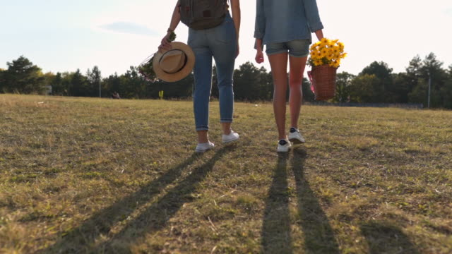 where we gonna find place for picnic? - simplicity video stock e b–roll