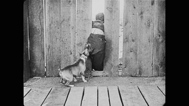 1920 while man (buster keaton) is trapped in a fence, a dog repeatedly bites his butt - chewing stock videos & royalty-free footage