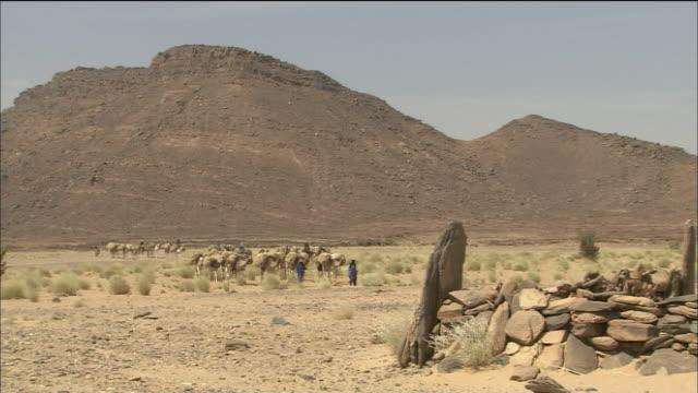 Whirlwind In Sahara Desert