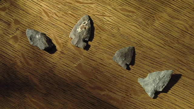 cu ha zi white arrowheads on wooden background, poplar river, manitoba, manitoba - indian arrowhead stock videos and b-roll footage