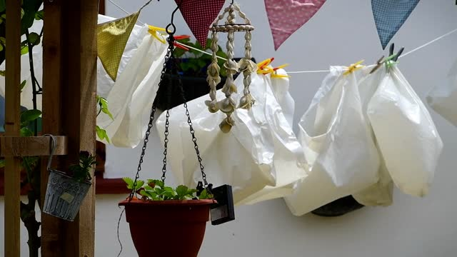 white bags hangs washing lines at the garden - baghdad stock videos & royalty-free footage