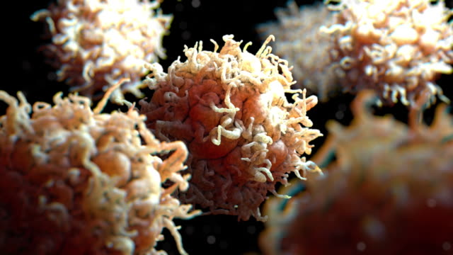 white blood cell 004 3d rendering: scanning electron microscope image of white blood cells - 白血球点の映像素材/bロール