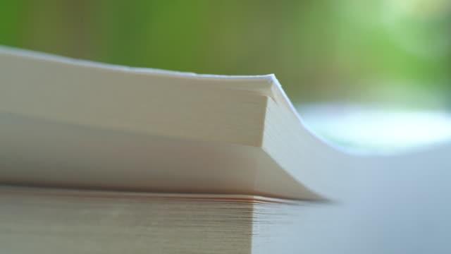 vídeos y material grabado en eventos de stock de página de giro de libro blanco en el fondo de la naturaleza - historia
